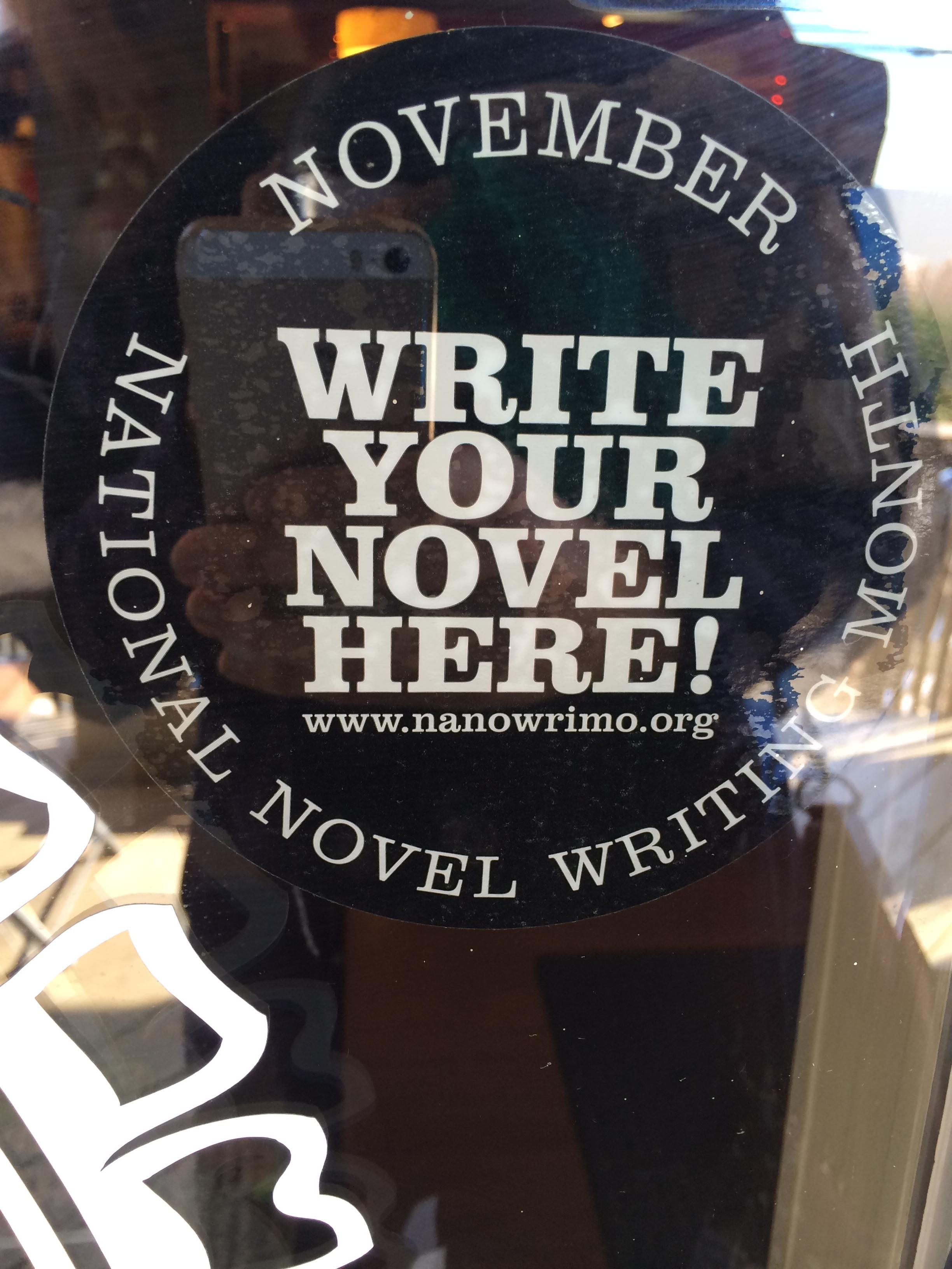 national novel writing month 2013 winner