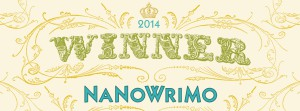 Winner-2014-Web-Banner write